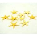 Rozgwiazdy Sugar